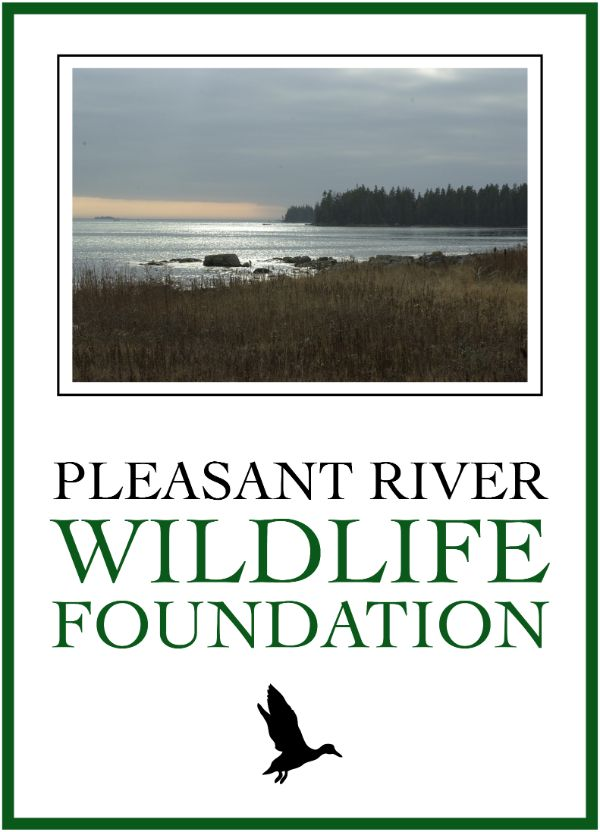 Pleasant River Wildlife Foundation